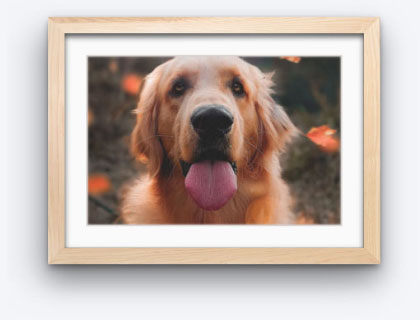 Custom Picture Frames Online Best Online Art Framing Service