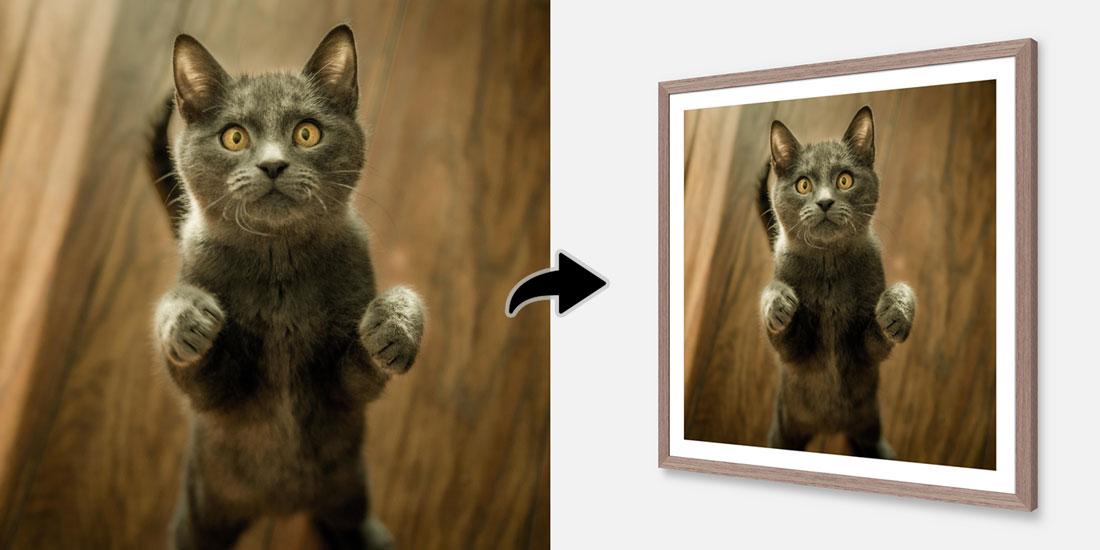 3d frame illustrator - Level Frames