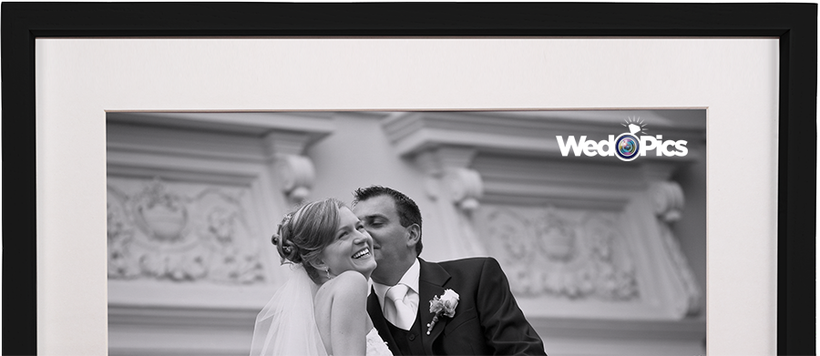 Wedpics header with logo