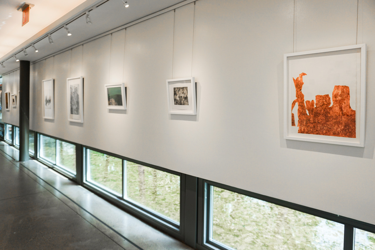 Nancy Paredes framed art and photos at the Queens Botanical Garden
