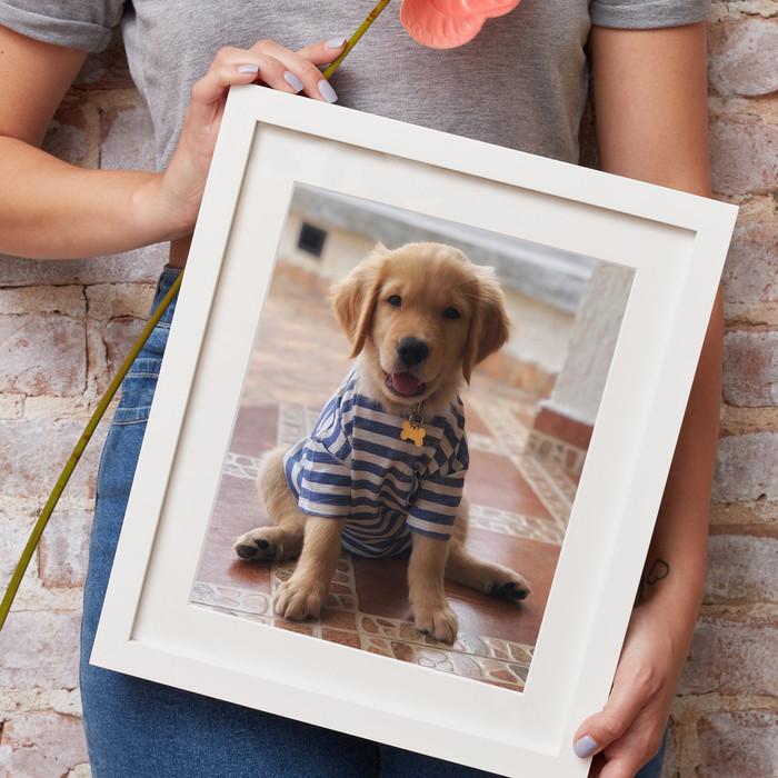 Frame a pet photo