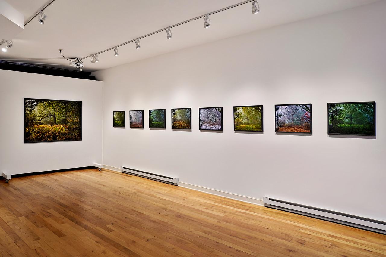 Noah Kalina custom framed photos exhibited in upstate New York